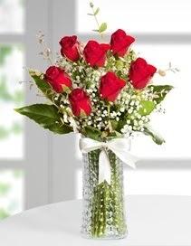 Cam vazoda 7 adet kırmızı gül  Türkiye İnternetten çiçek siparişi
