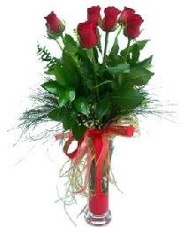 vazo içerisinde 5 kırmızı gül  Türkiye anneler günü çiçek yolla