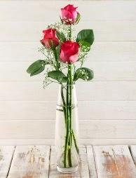 Cam içerisinde 3 kırmızı gül  Türkiye çiçek yolla , çiçek gönder , çiçekçi