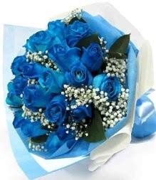 15 adet mavi gülden şahane eşsiz buket  Türkiye çiçekçiler