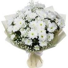 Papatya Buketi  Türkiye 14 şubat sevgililer günü çiçek