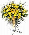 Türkiye hediye sevgilime hediye çiçek  Sari kazablanka Ferforje