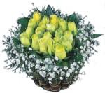Türkiye çiçek satışı  Sari harika bir gül sepeti