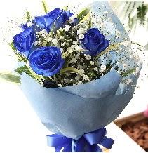 5 adet mavi gülden buket çiçeği  Türkiye çiçek yolla , çiçek gönder , çiçekçi