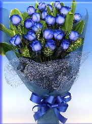 19 adet eşsiz mavi gül buketi  Türkiye çiçekçiler