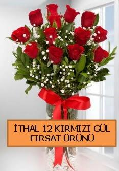 İthal kırmızı 12 adet kaliteli gül  Türkiye çiçek gönderme sitemiz güvenlidir