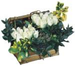 Türkiye çiçekçi mağazası  Ahsap sandik beyaz güller