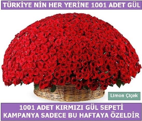 1001 Adet kırmızı gül Bu haftaya özel  Türkiye çiçek mağazası , çiçekçi adresleri