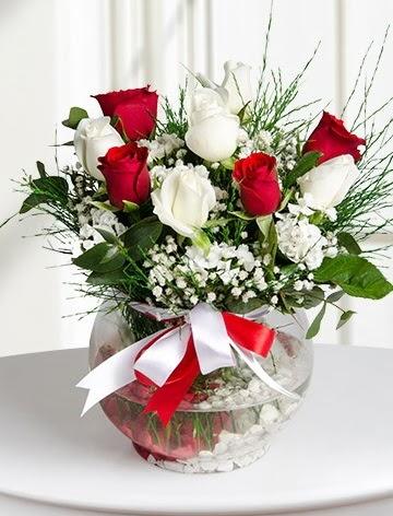 Aşk Küresi  5 beyaz 5 kırmızı gül fanusta  Türkiye çiçek satışı
