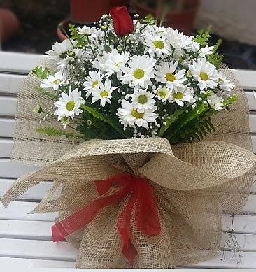 Papatya 1 adet kırmızı gül buketi  Türkiye çiçek , çiçekçi , çiçekçilik