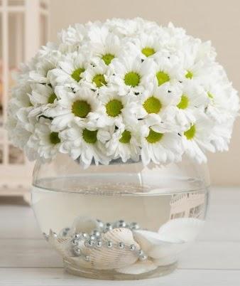 Fanusta beyaz Papatya  Türkiye çiçek yolla , çiçek gönder , çiçekçi