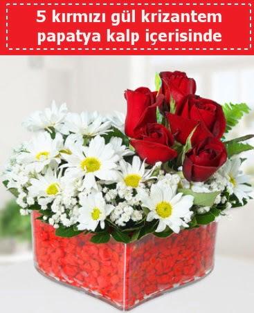 mika kalp içerisinde 5 kırmızı gül papatya  Türkiye yurtiçi ve yurtdışı çiçek siparişi