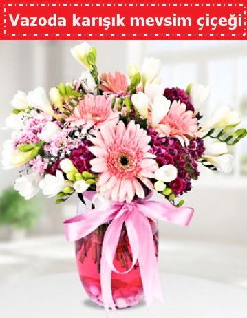 Vazoda karışık mevsim çiçeği  Türkiye İnternetten çiçek siparişi