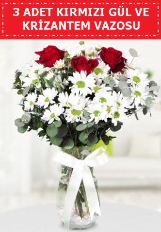 3 kırmızı gül ve camda krizantem çiçekleri  Türkiye yurtiçi ve yurtdışı çiçek siparişi