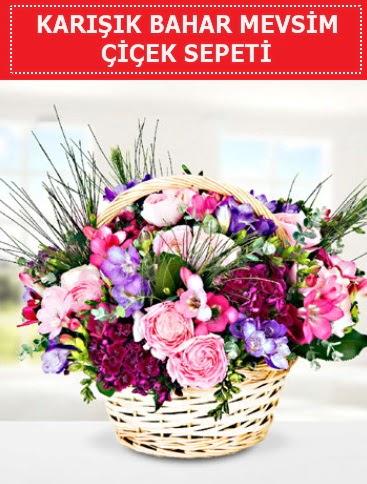 Karışık mevsim bahar çiçekleri  Türkiye çiçek gönderme sitemiz güvenlidir