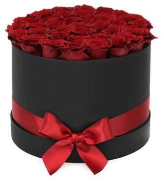 Siyah Kutuda 25 adet kırmızı gül  Türkiye kaliteli taze ve ucuz çiçekler