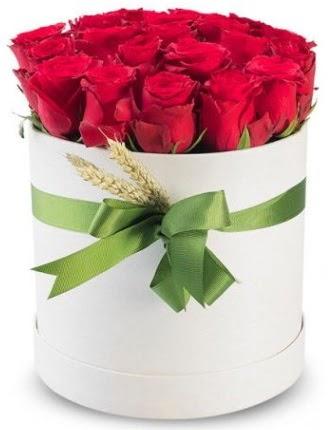 Özel kutuda 25 adet kırmızı gül çiçeği  Türkiye çiçek yolla , çiçek gönder , çiçekçi