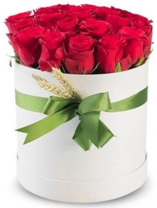 25 adet özel kutuda kırmızı gül  Türkiye internetten çiçek satışı  söz çiçekler