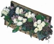 Türkiye ucuz çiçek gönder  13 adet beyaz sandikta gül