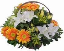 Türkiye çiçek online çiçek siparişi  sepet modeli Gerbera kazablanka sepet