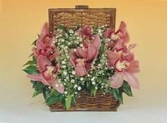 Türkiye internetten çiçek satışı  Sepet içerisinde orkide